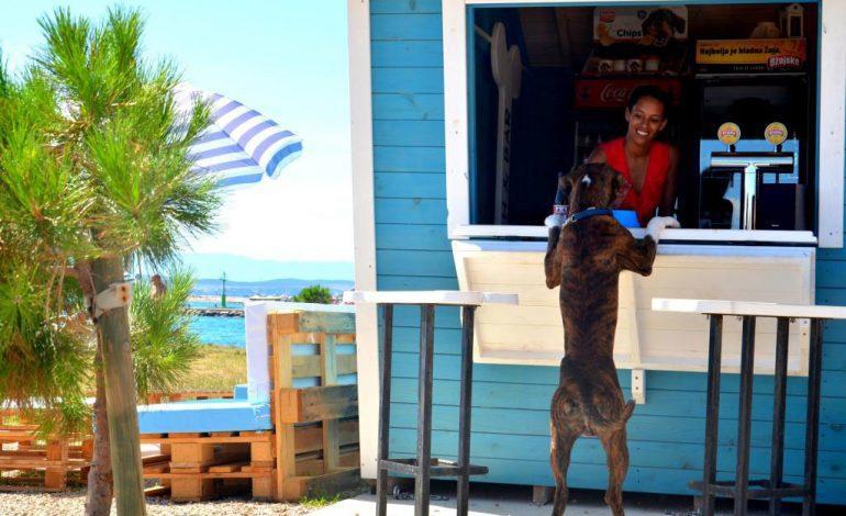 Monty's Dog Beach and Bar u Crikvenici – prvi i najbolji!