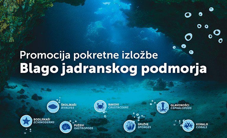 """Svjetski dan mora i oceana otvaranjem izložbe """"Blago jadranskog podmorja"""""""